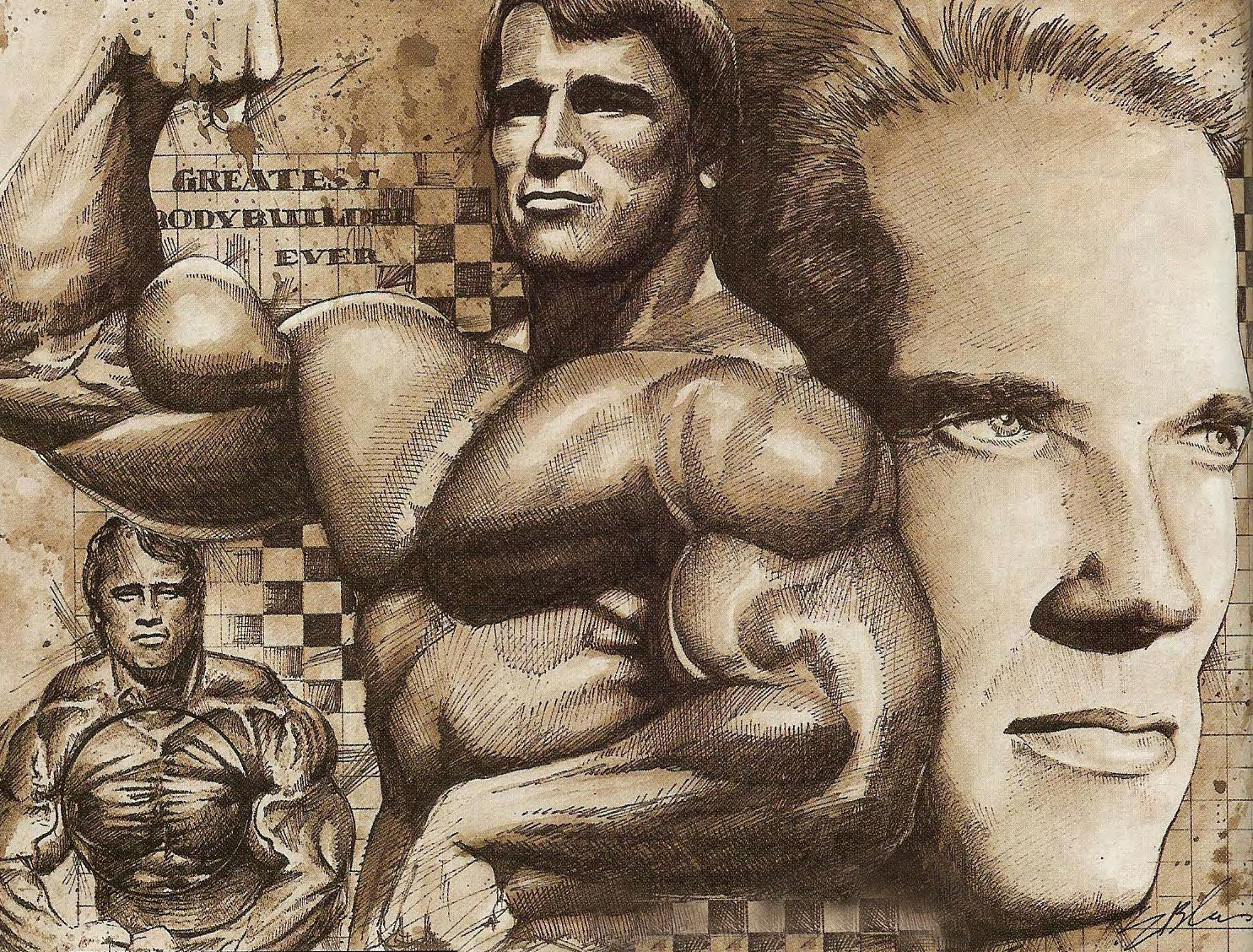 Arnold Training Guide